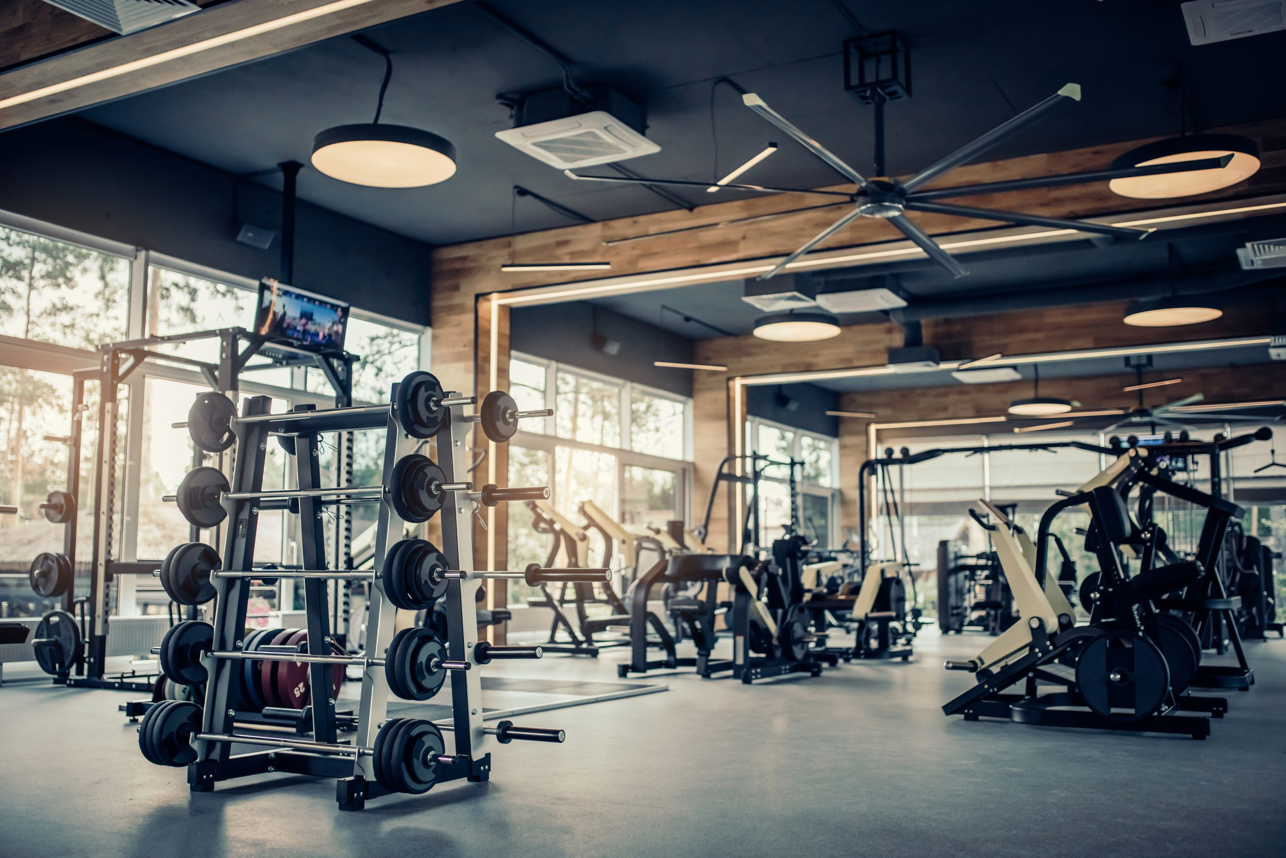 Modern,Light,Gym.,Sports,Equipment,In,Gym.,Barbells,Of,Different